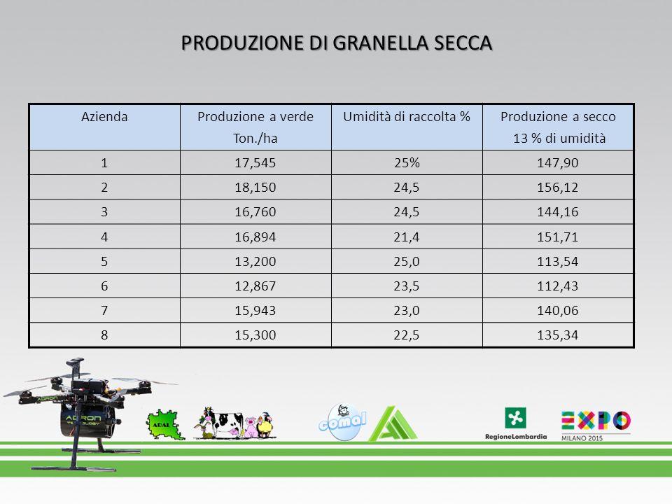 PRODUZIONE DI GRANELLA SECCA