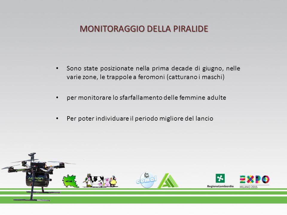 MONITORAGGIO DELLA PIRALIDE
