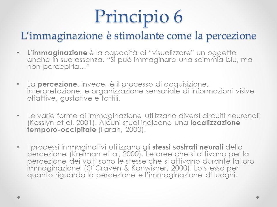 Principio 6 L'immaginazione è stimolante come la percezione