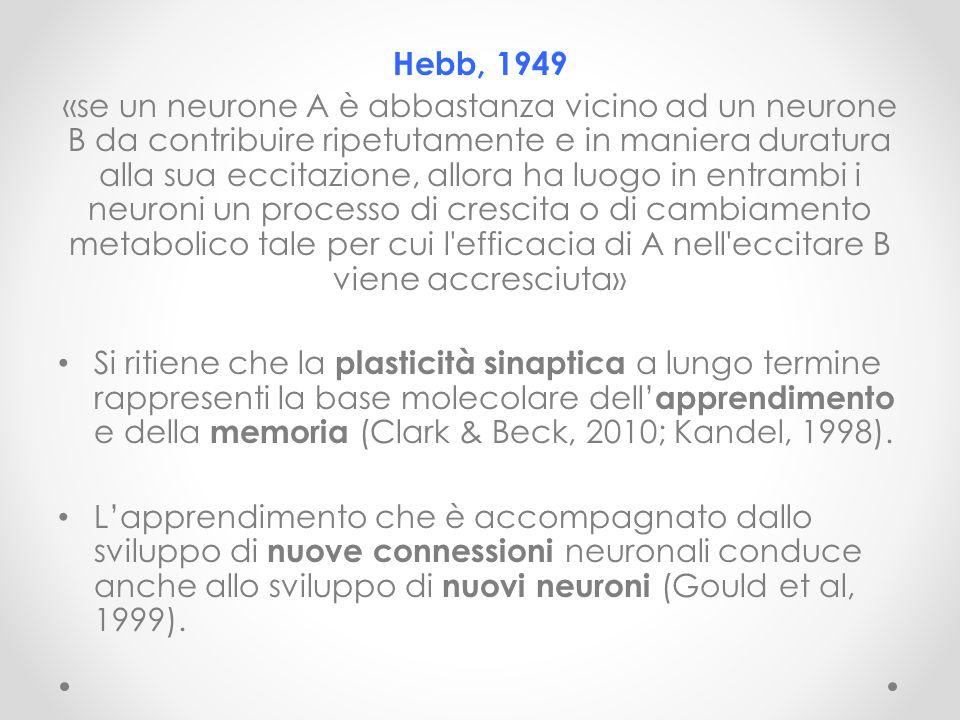 Hebb, 1949