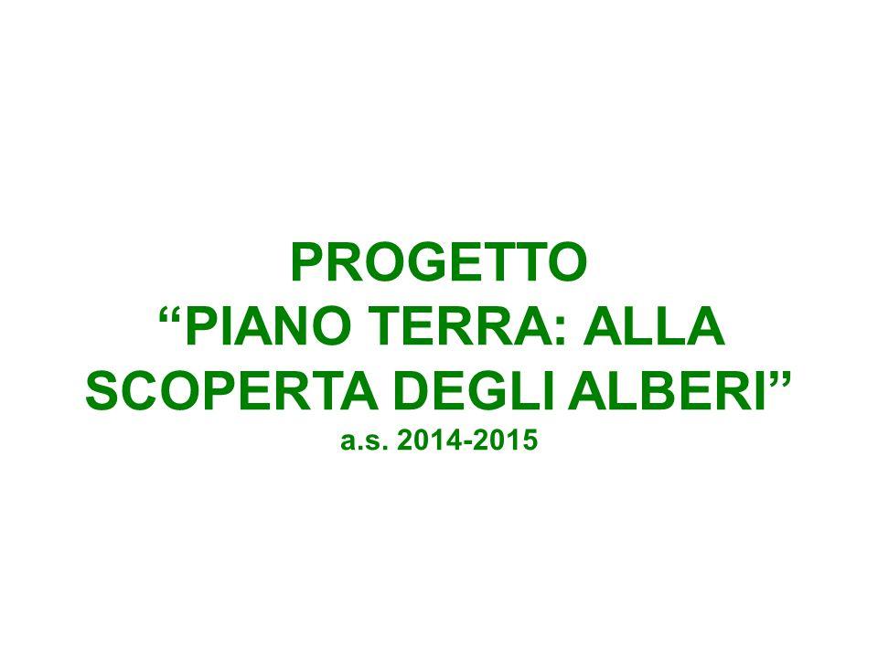 PROGETTO PIANO TERRA: ALLA SCOPERTA DEGLI ALBERI a.s. 2014-2015
