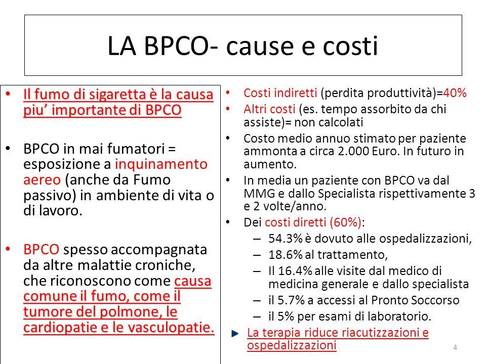 LA BPCO- cause e costi Il fumo di sigaretta è la causa piu' importante di BPCO.