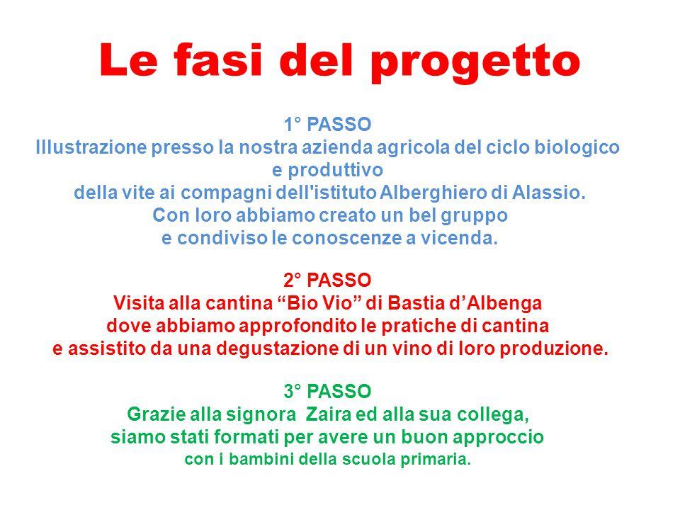 Le fasi del progetto 1° PASSO