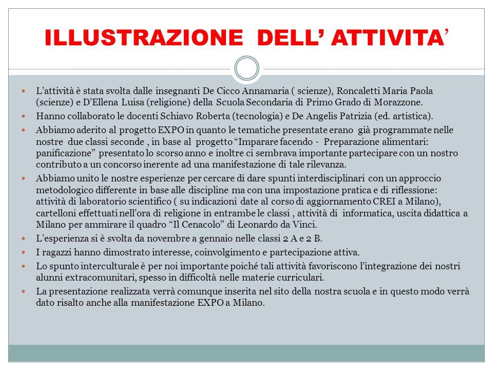 ILLUSTRAZIONE DELL' ATTIVITA'
