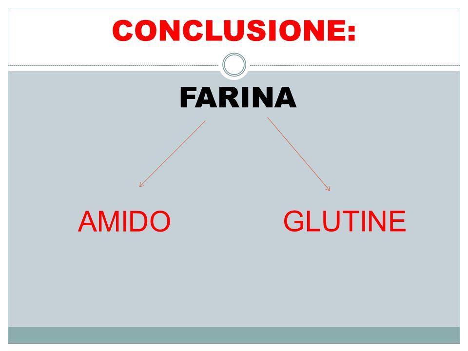 CONCLUSIONE: FARINA AMIDO GLUTINE