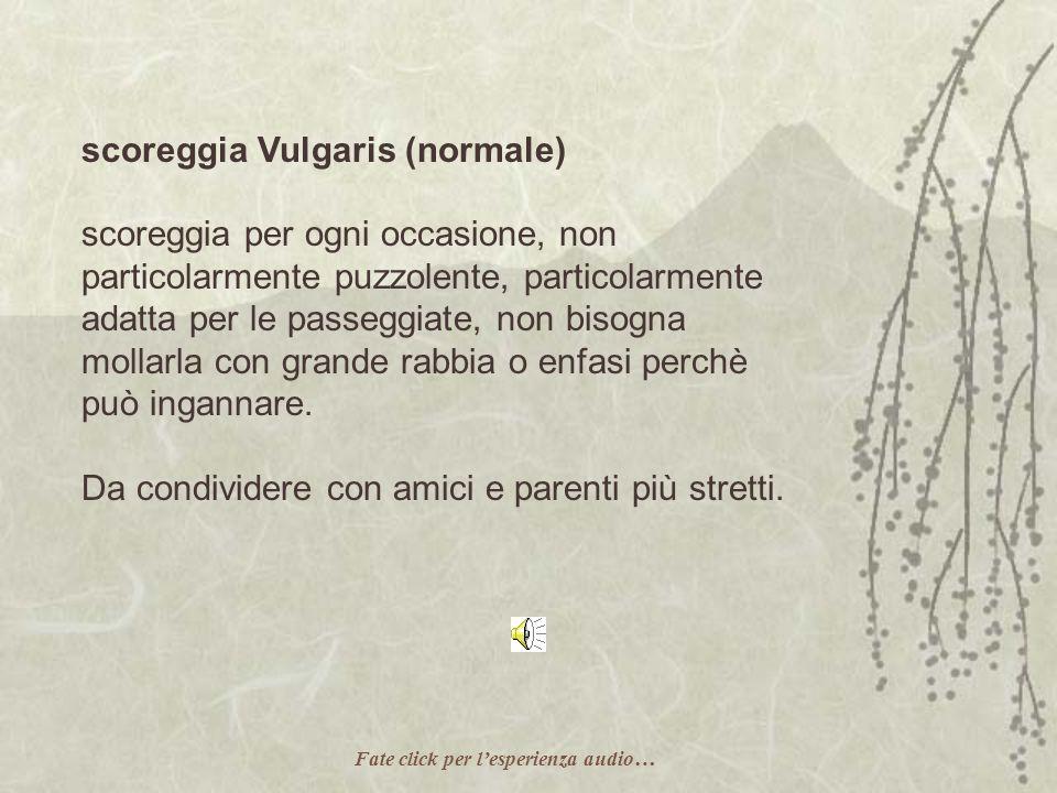 scoreggia Vulgaris (normale)