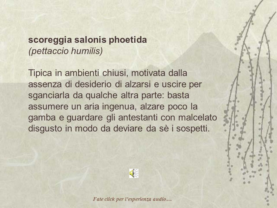 scoreggia salonis phoetida (pettaccio humilis)