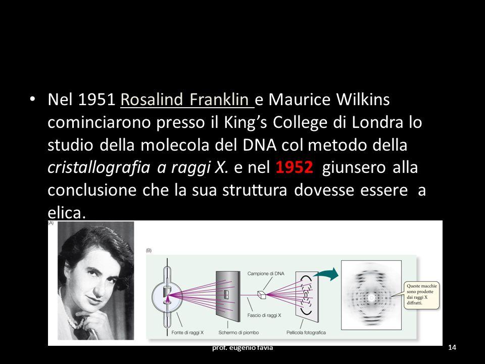 Nel 1951 Rosalind Franklin e Maurice Wilkins cominciarono presso il King's College di Londra lo studio della molecola del DNA col metodo della cristallografia a raggi X. e nel 1952 giunsero alla conclusione che la sua struttura dovesse essere a elica.