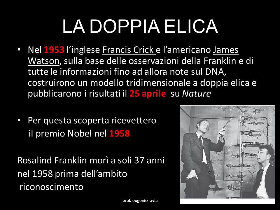 LA DOPPIA ELICA
