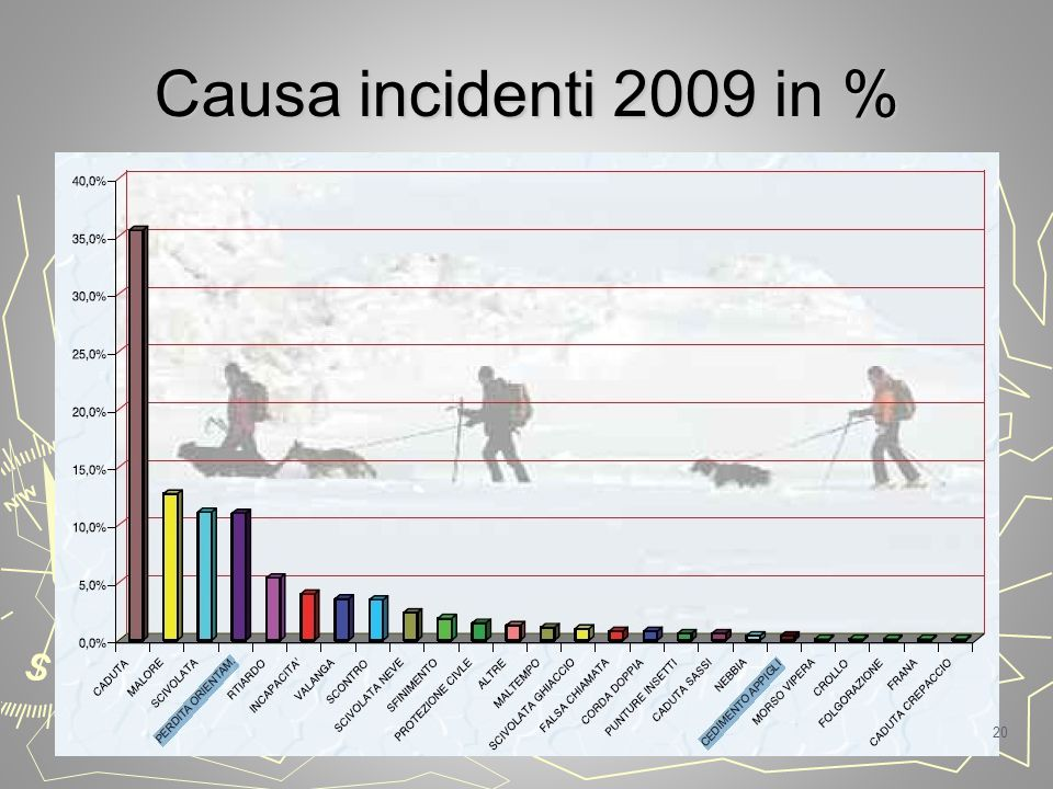 Causa incidenti 2009 in %