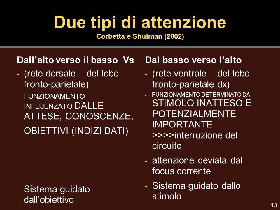 Due tipi di attenzione Corbetta e Shulman (2002)