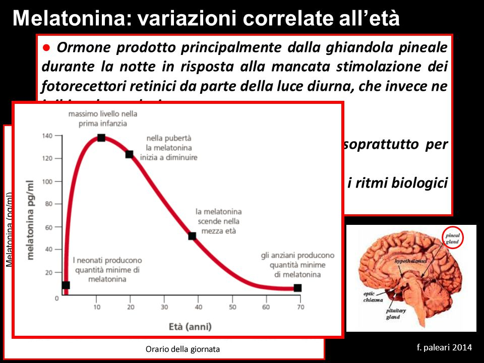 Melatonina: variazioni correlate all'età