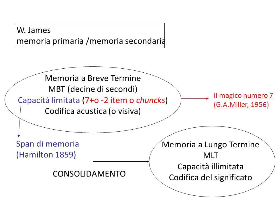 memoria primaria /memoria secondaria
