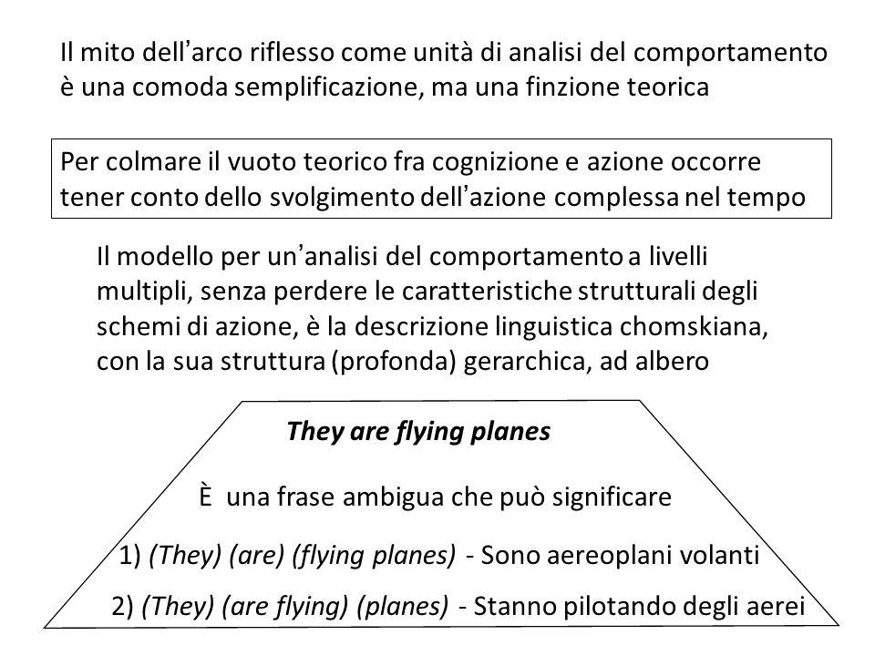 Il mito dell'arco riflesso come unità di analisi del comportamento è una comoda semplificazione, ma una finzione teorica