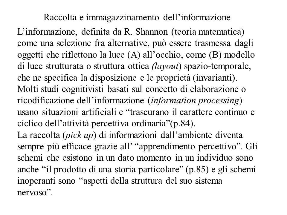 Raccolta e immagazzinamento dell'informazione