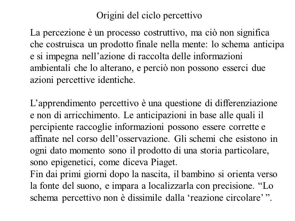 Origini del ciclo percettivo
