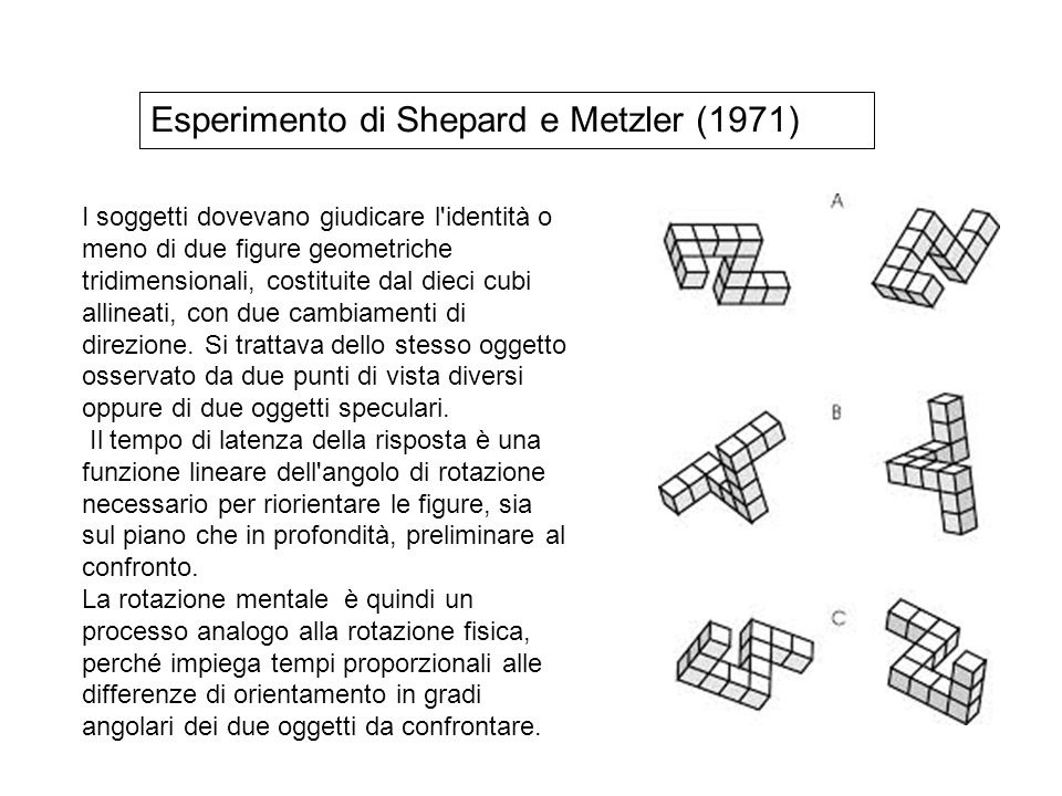 Esperimento di Shepard e Metzler (1971)