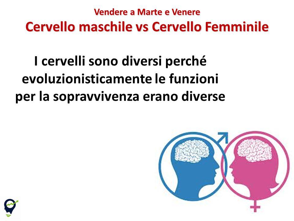 Vendere a Marte e Venere Cervello maschile vs Cervello Femminile