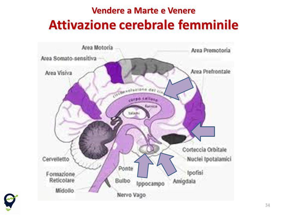Vendere a Marte e Venere Attivazione cerebrale femminile