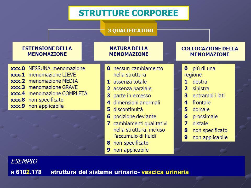 STRUTTURE CORPOREE ESEMPIO: