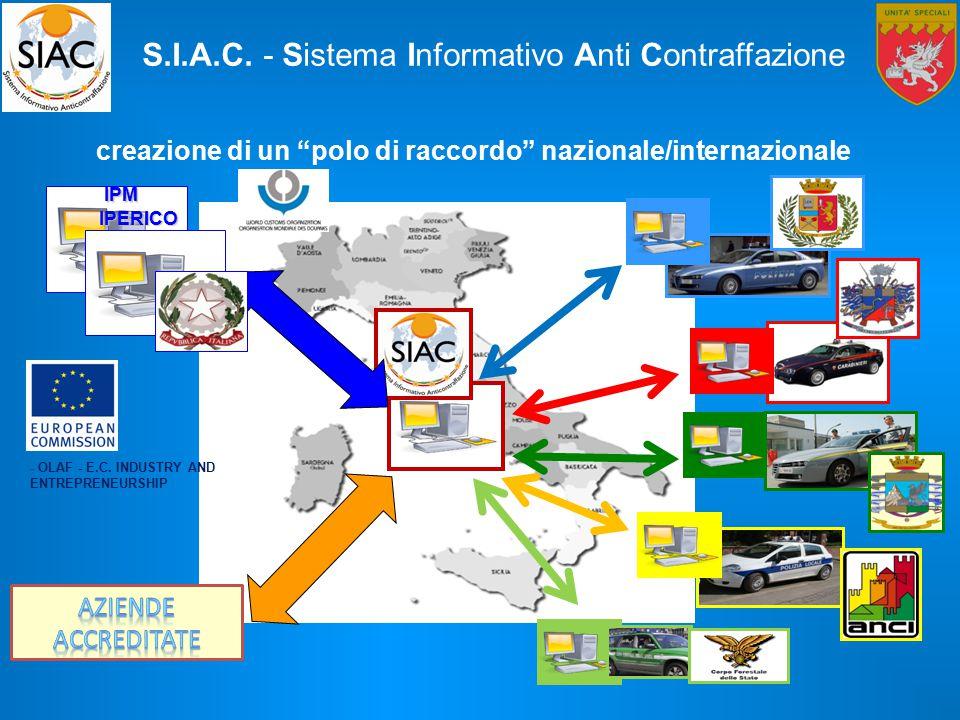 creazione di un polo di raccordo nazionale/internazionale