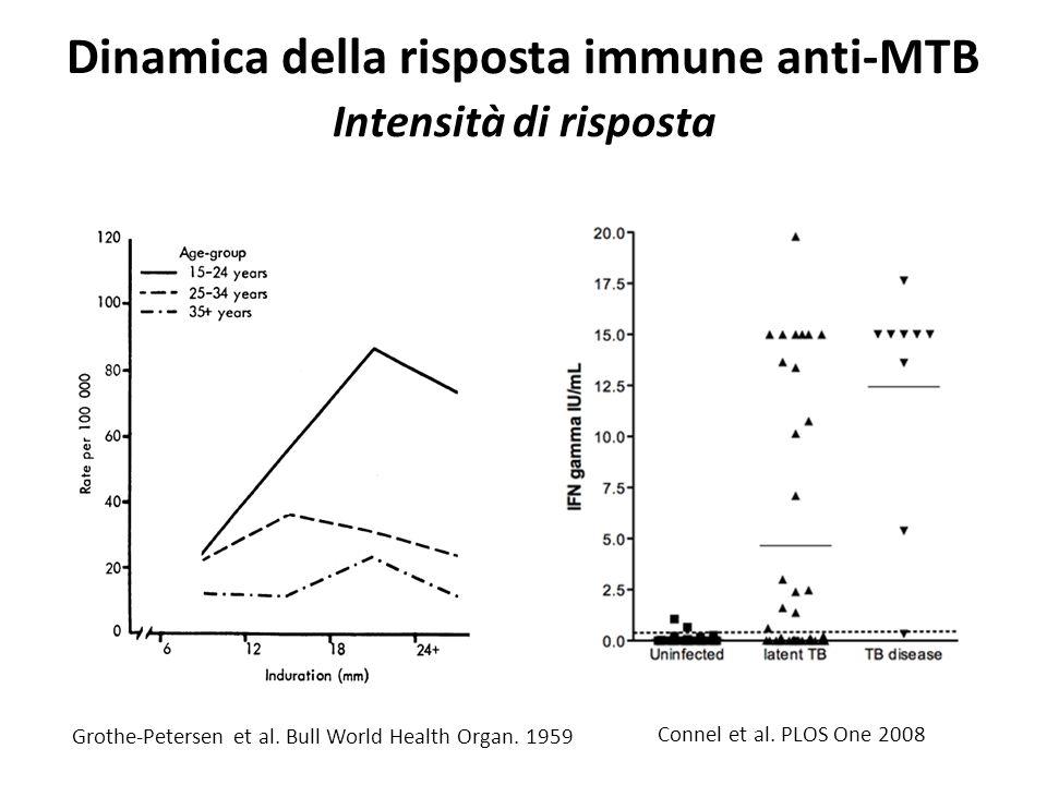 Dinamica della risposta immune anti-MTB Intensità di risposta