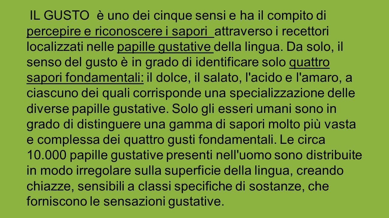 IL GUSTO è uno dei cinque sensi e ha il compito di percepire e riconoscere i sapori attraverso i recettori localizzati nelle papille gustative della lingua.