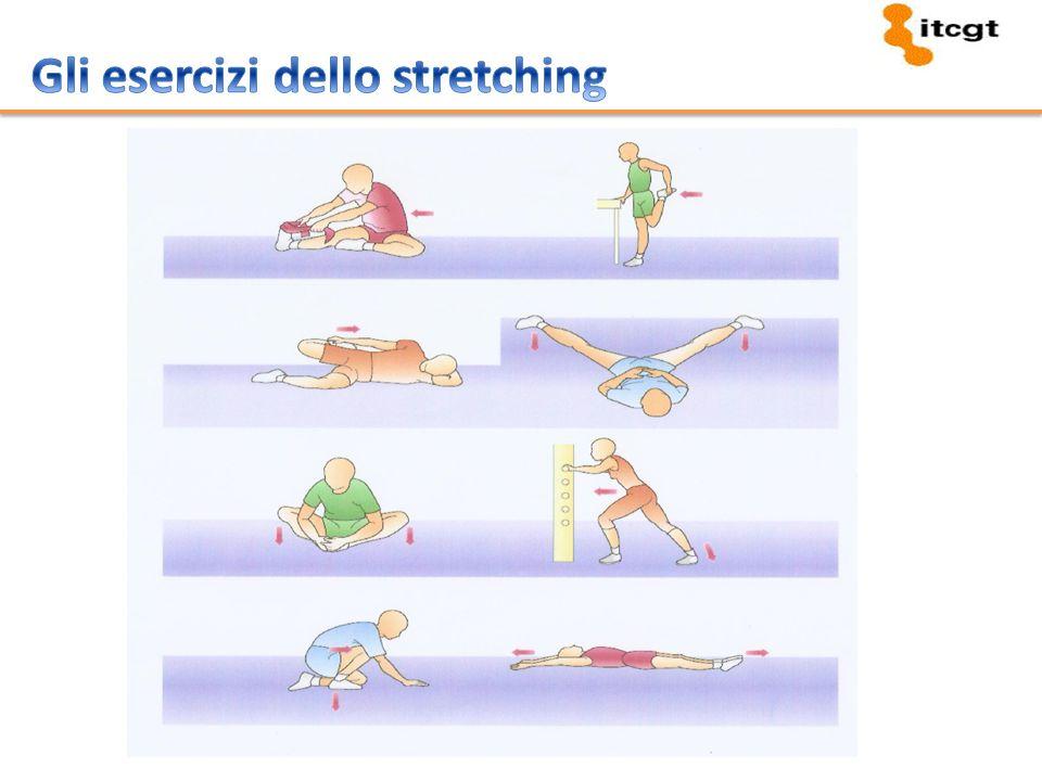Gli esercizi dello stretching