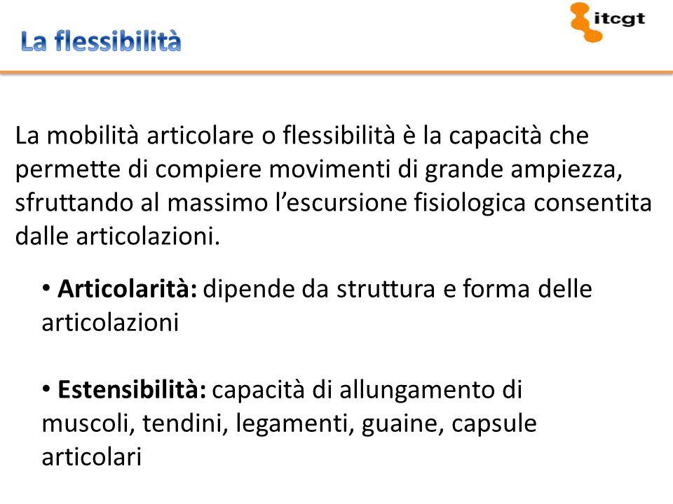 La flessibilità La mobilità articolare o flessibilità è la capacità che. permette di compiere movimenti di grande ampiezza,