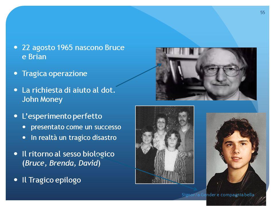 22 agosto 1965 nascono Bruce e Brian Tragica operazione