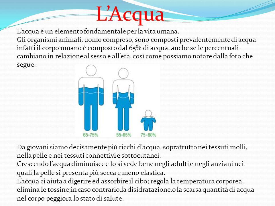 L'Acqua L'acqua è un elemento fondamentale per la vita umana.