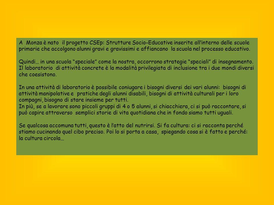 A Monza è nato il progetto CSEp: Strutture Socio-Educative inserite all'interno delle scuole primarie che accolgono alunni gravi e gravissimi e affiancano la scuola nel processo educativo.