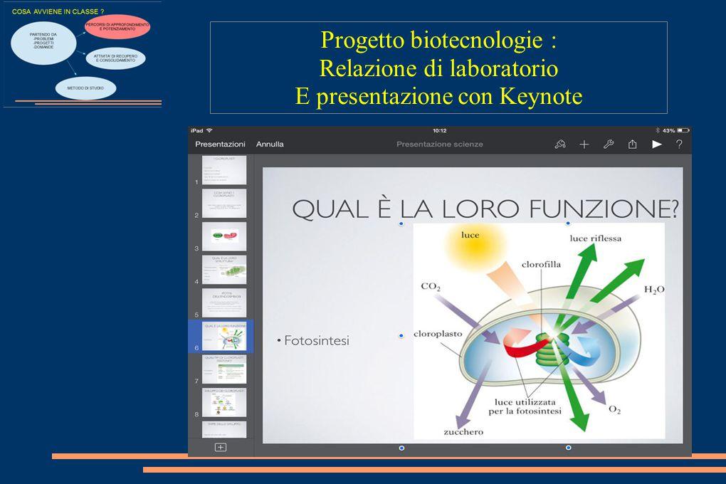 Progetto biotecnologie : Relazione di laboratorio