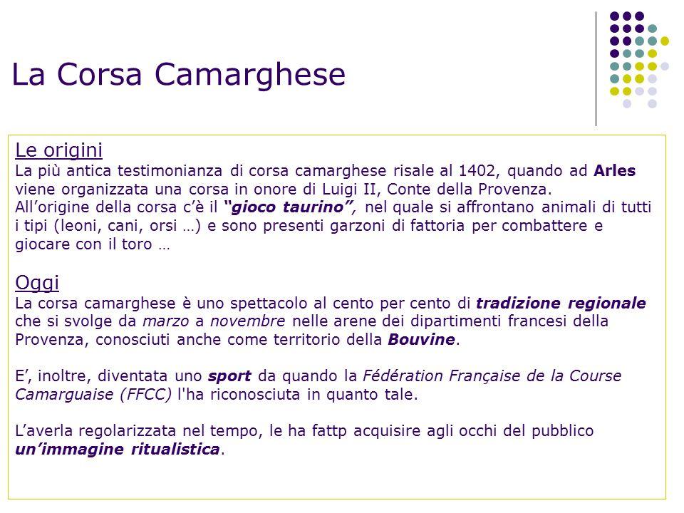 La Corsa Camarghese Le origini Oggi