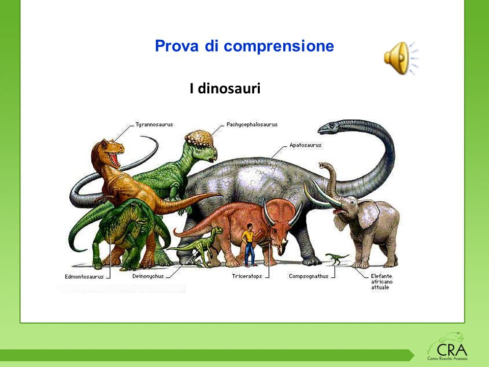 Prova di comprensione I dinosauri