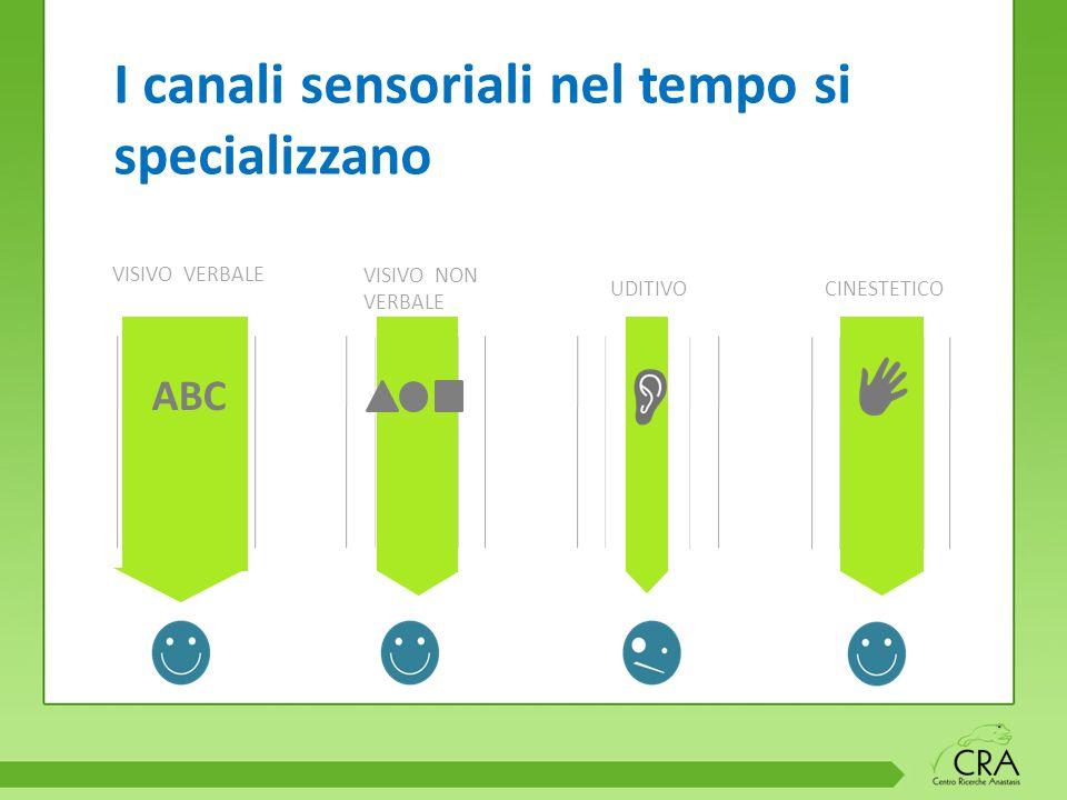 I canali sensoriali nel tempo si specializzano