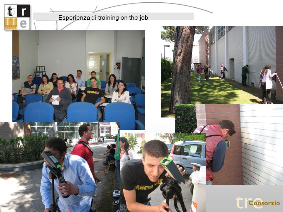 Esperienza di training on the job