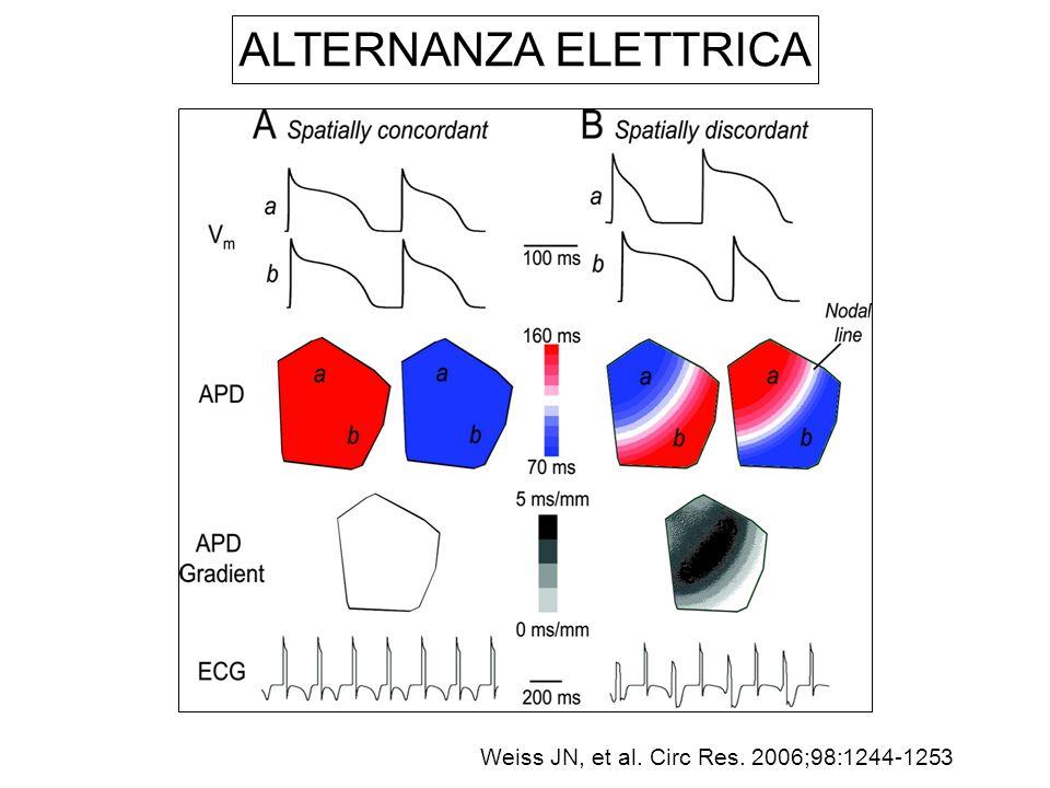 ALTERNANZA ELETTRICA Weiss JN, et al. Circ Res. 2006;98:1244-1253