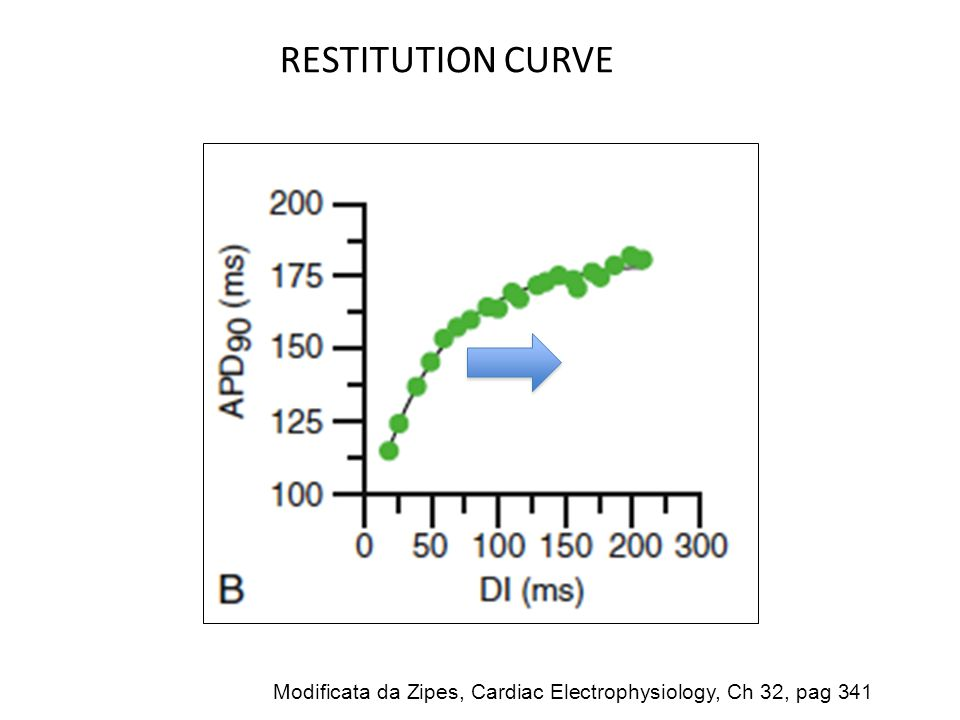 RESTITUTION CURVE