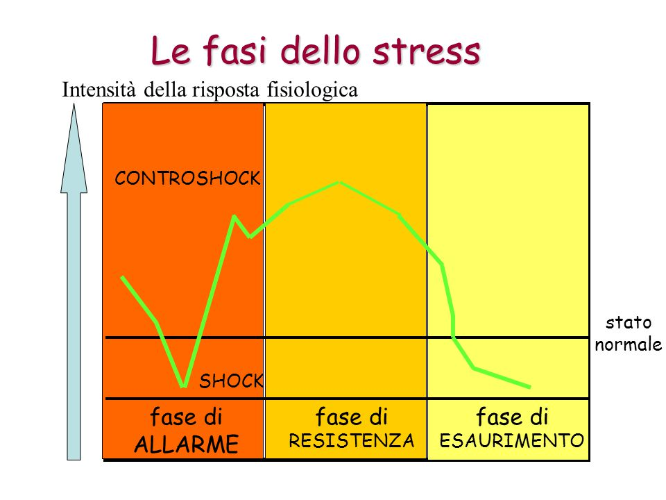 Le fasi dello stress fase di ALLARME fase di RESISTENZA