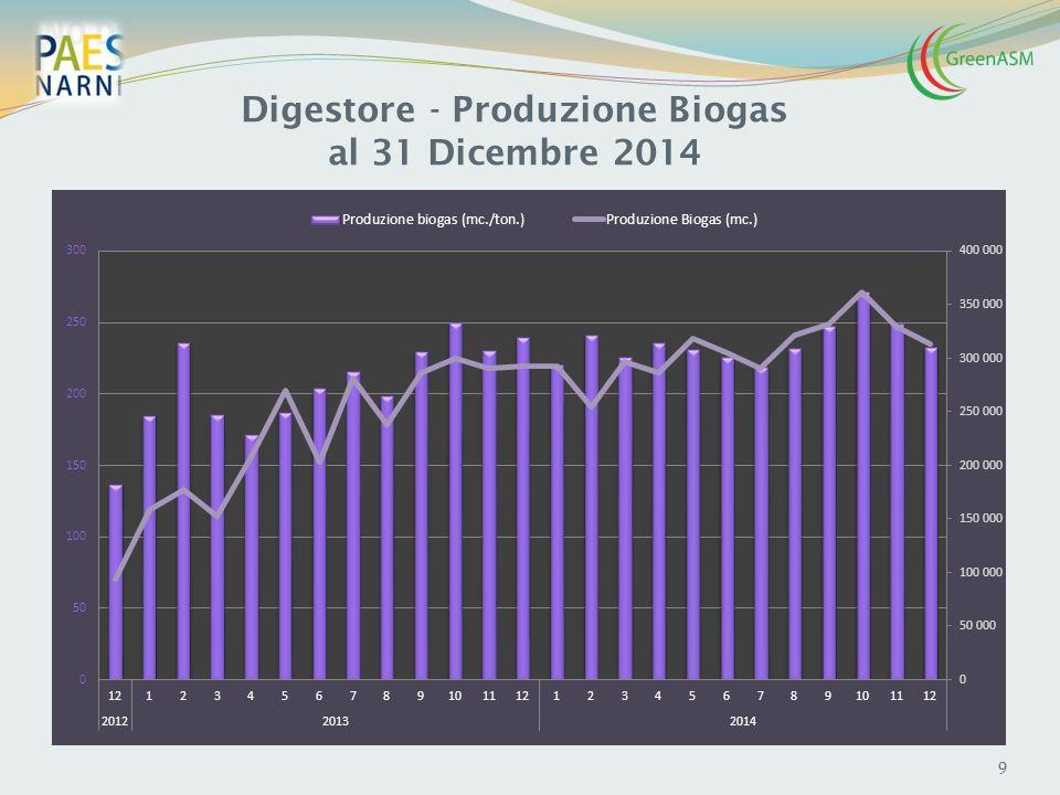 Digestore - Produzione Biogas al 31 Dicembre 2014