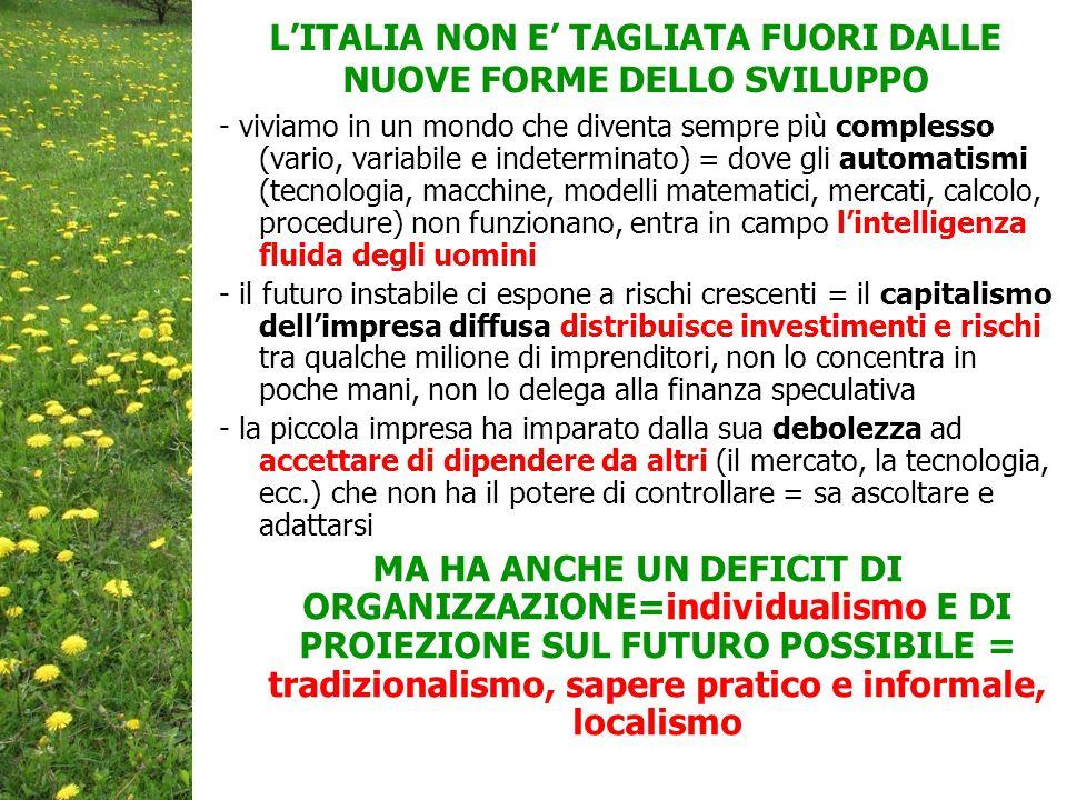 L'ITALIA NON E' TAGLIATA FUORI DALLE NUOVE FORME DELLO SVILUPPO