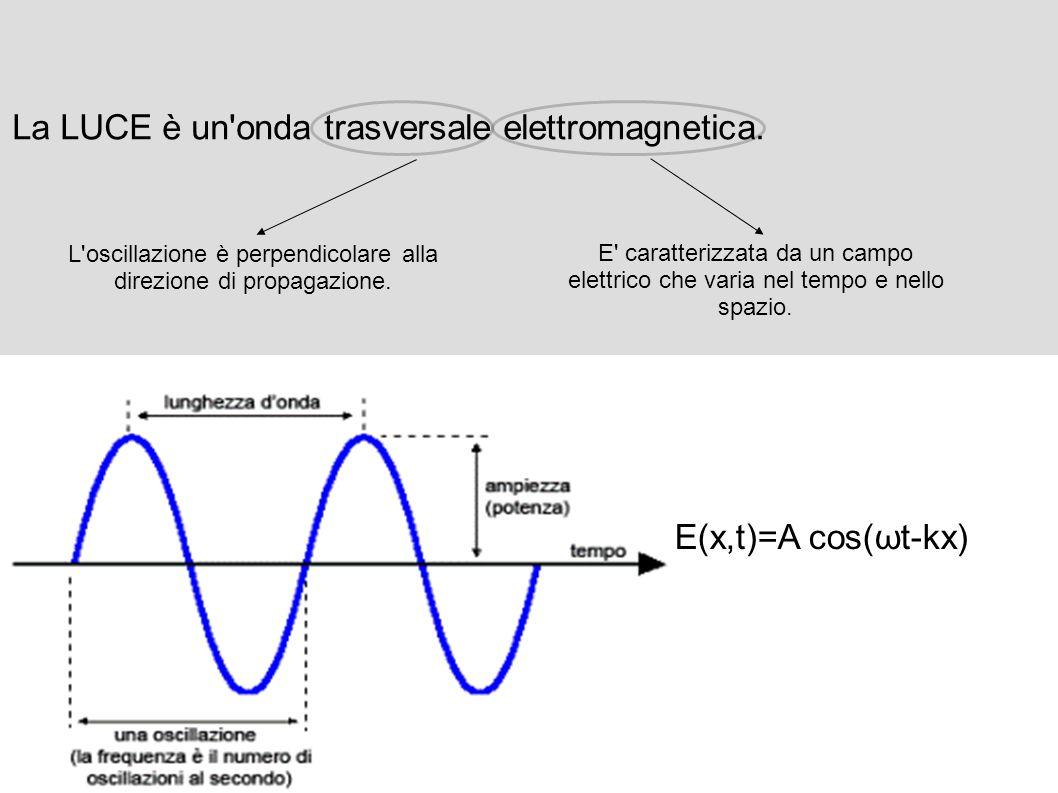 L oscillazione è perpendicolare alla direzione di propagazione.