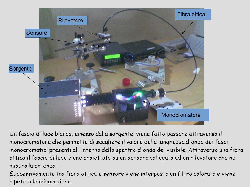 Fibra ottica Rilevatore. Sensore. Sorgente. Monocromatore.