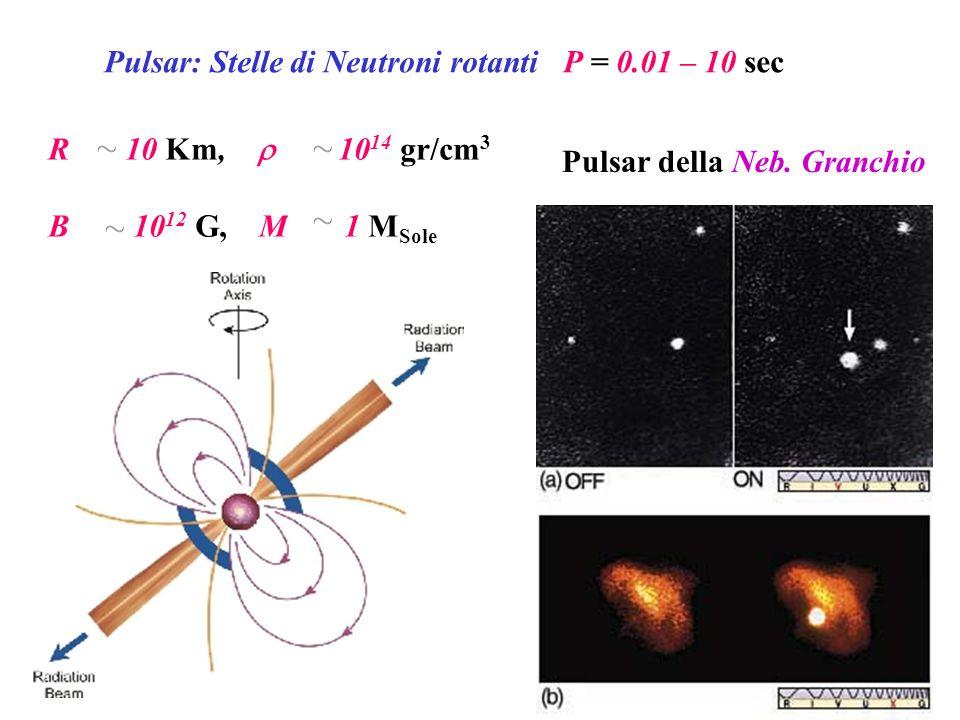 Pulsar: Stelle di Neutroni rotanti P = 0.01 – 10 sec