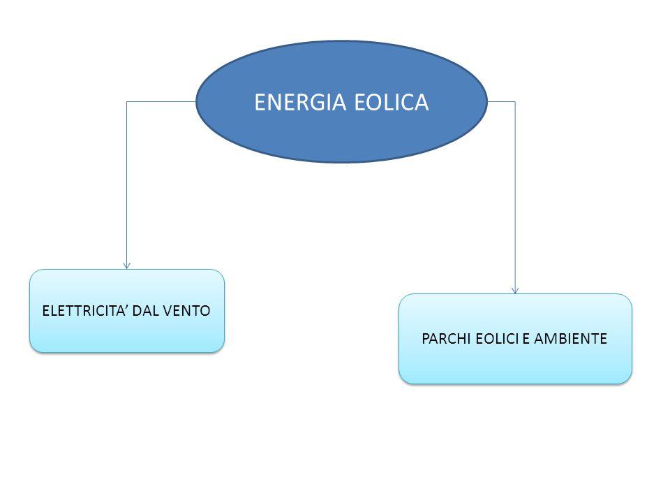 ENERGIA EOLICA ELETTRICITA' DAL VENTO PARCHI EOLICI E AMBIENTE