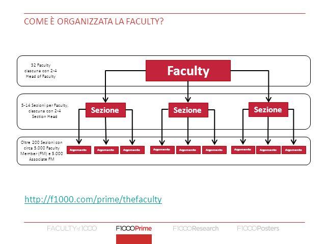 Come è organizzata la Faculty