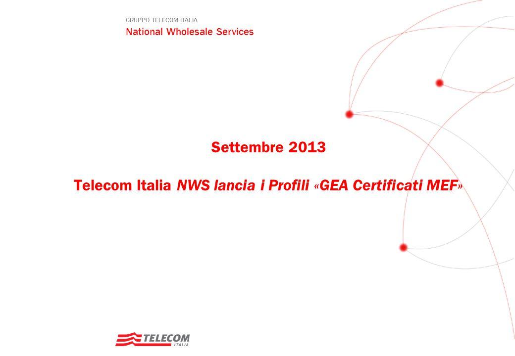 Settembre 2013 Telecom Italia NWS lancia i Profili «GEA Certificati MEF»