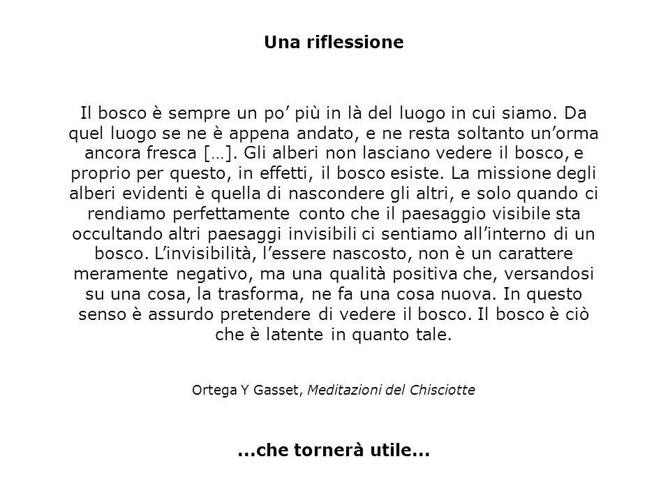 Ortega Y Gasset, Meditazioni del Chisciotte