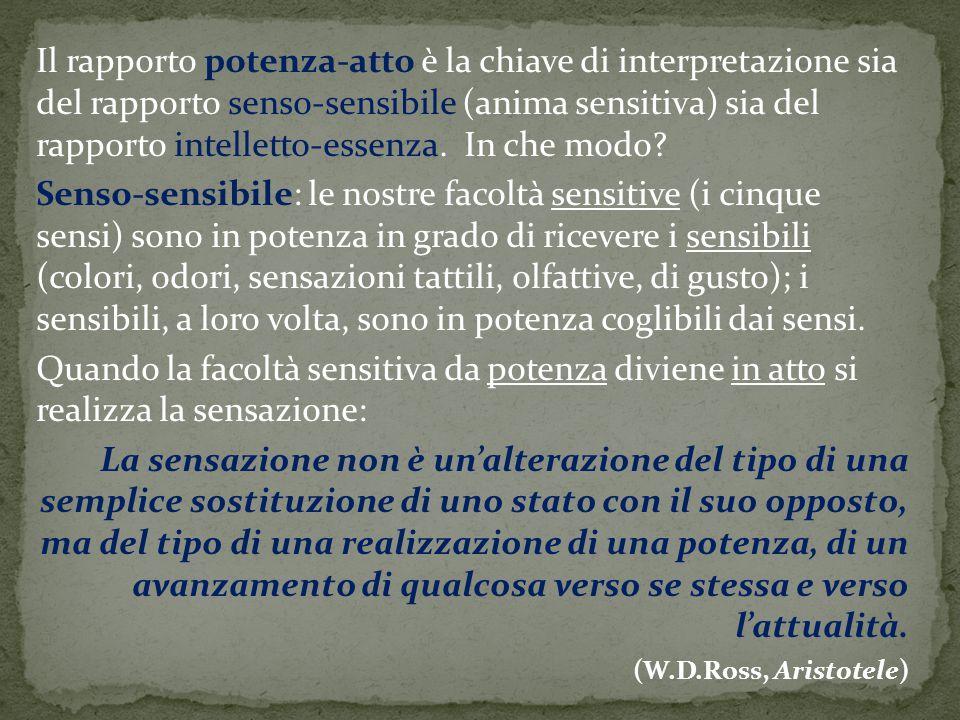 Il rapporto potenza-atto è la chiave di interpretazione sia del rapporto senso-sensibile (anima sensitiva) sia del rapporto intelletto-essenza. In che modo